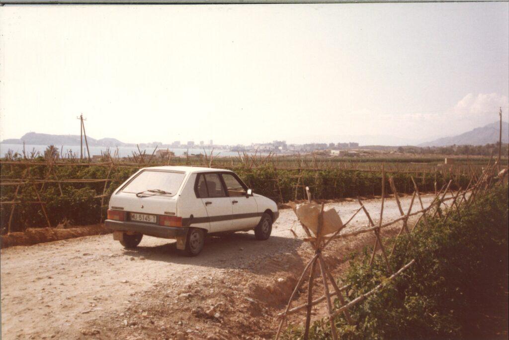 Campo de tomate al aire libre 1969